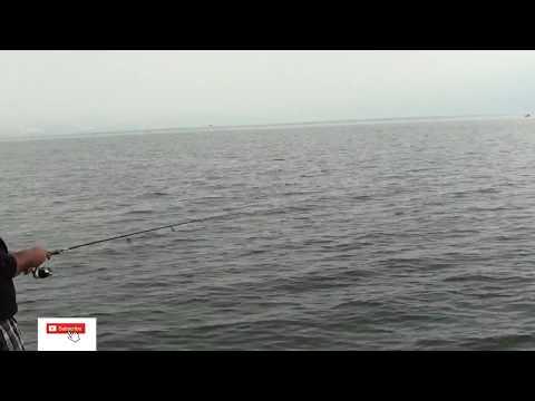 דייג ביניות ביום חורפי בכנרת כולל הסבר
