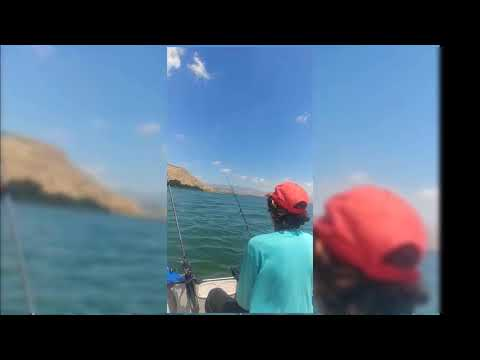 סרטון טרולינג ראשון מהסירה בכנרת.