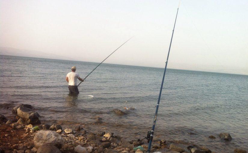מדריך דייג בחכה עם מצוף, חכת בוס