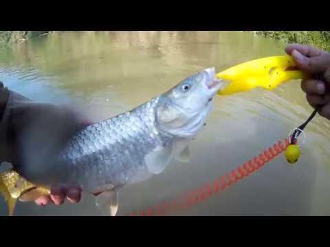 איך למצוא נקודות דייג חדשות בירדן